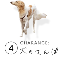 4 CHARANGE:犬のさんぽ