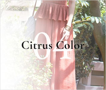 04 Citrus color