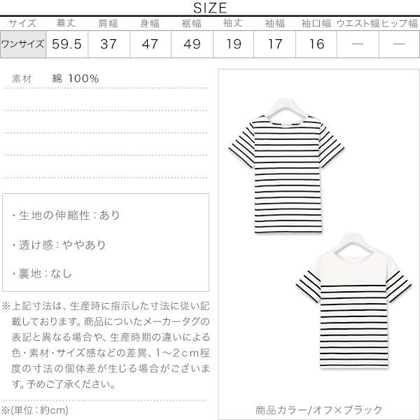 コットン100%半袖カットソー [C2104]のサイズ表