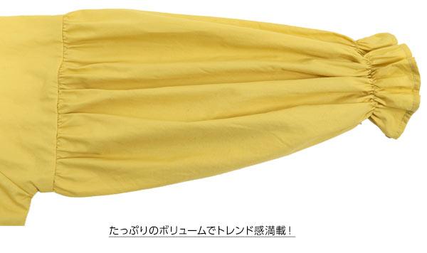 Vネックキャンディスリーブブラウス [C3115]