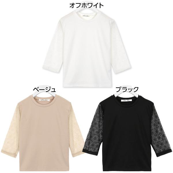 袖シアーデザイントップス [C3461]
