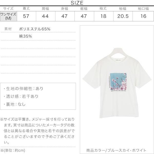 選べるフォトプリントTシャツ [C3877]のサイズ表