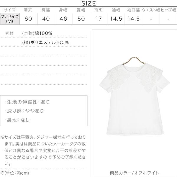 ビッグカラー襟付きカットソーTシャツ [C5479]のサイズ表