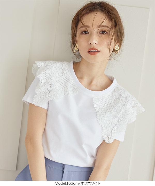 ビッグカラー襟付きカットソーTシャツ [C5479]