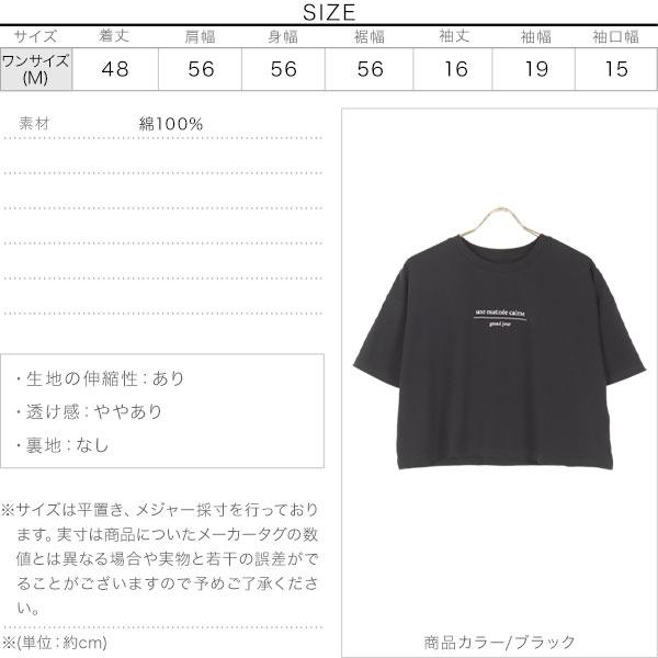 オーガニックコットンクロップドTシャツ [C5507]のサイズ表