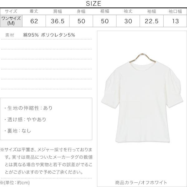 袖タックバルーンスリーブTシャツ [C5549]のサイズ表