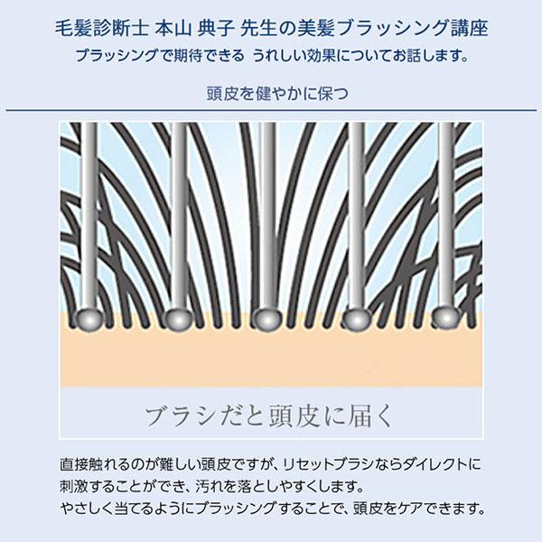 ≪SALE!!≫リセットブラシ [Y500]